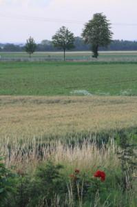 Gewässerschutz_Treffen_Landwirte_24_02_2015
