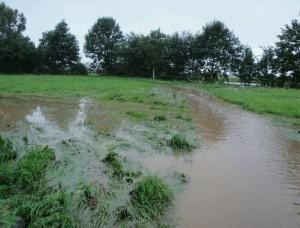 Hochwasser im Mieler Park