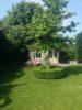 Bild-Baum1